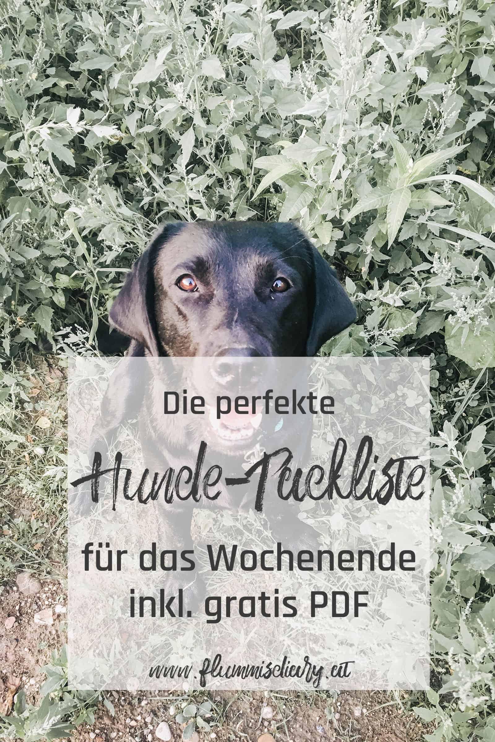 hunde-packliste-für-das-wochenende