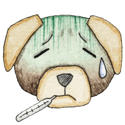 Hund_krank_weißer Hintergrund_Aram und Abra