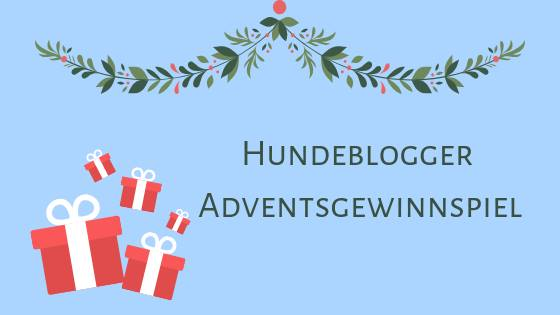 hundeblogger-adventkalender-gewinnspiel