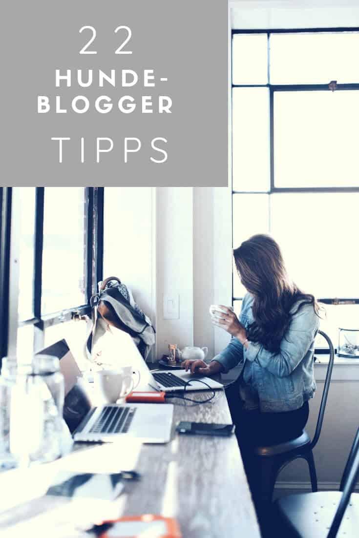 hundeblogger-werden-tipps-flummisdiary