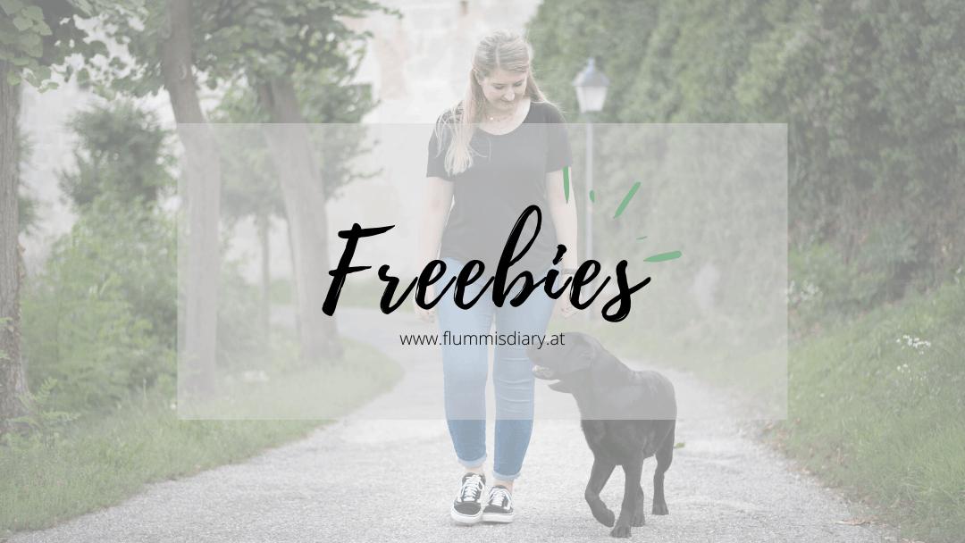freebie-flummis-diary-kostenlos-ebook-gratis